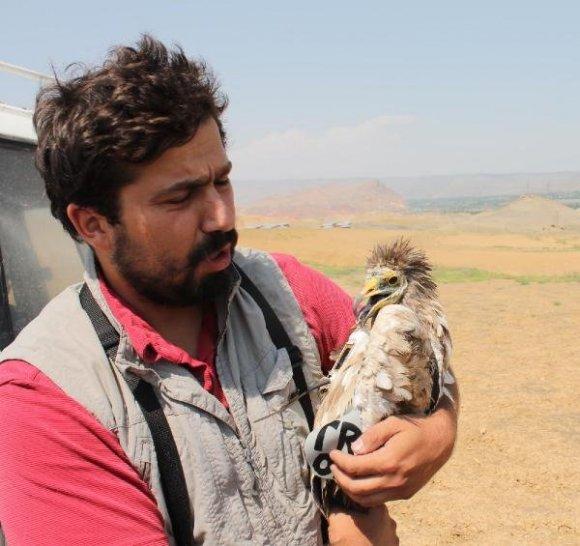 Biyolog Emrah Çoban Yaban Hayatını anlatıyor…