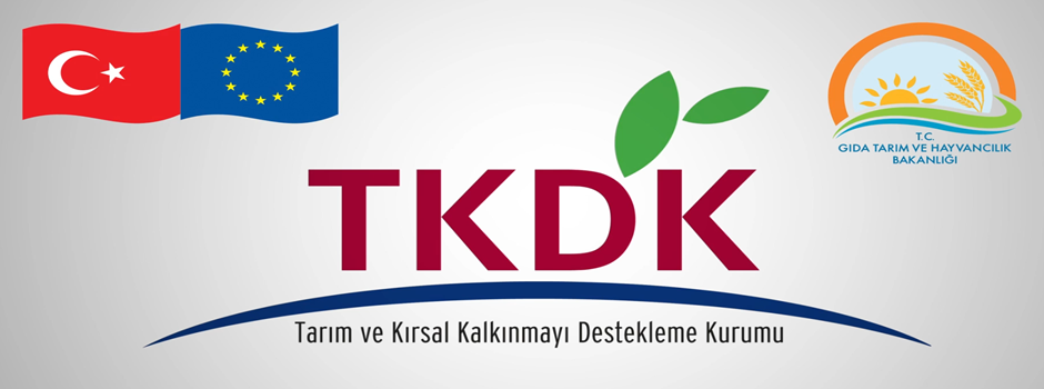 TKDK Destek Sağlanacak Alanları Açıkladı