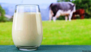 2017 Yılı Çiğ Süt Fiyatları