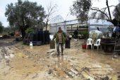 Ayvalık'ta şiddetli yağış ekili arazileri vurdu