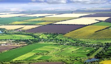 Hazineye ait tarım arazilerinin çiftçiye kiralanması