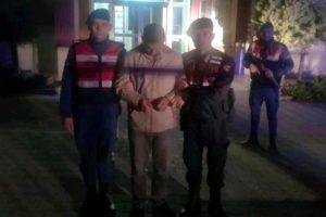 Kiralık otomobille koyun çalan kişi tutuklandı