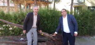 Sason'da 4 bin adet ceviz fidanı dağıtıldı