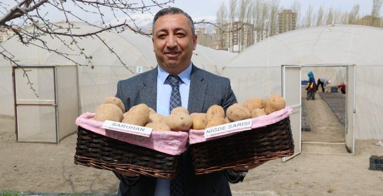 Türkiye'ye 2 milli patates çeşidi daha tescillendi