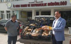 Yine kaçak avlanan 1 ton balık yakalandı, müdür dert yandı
