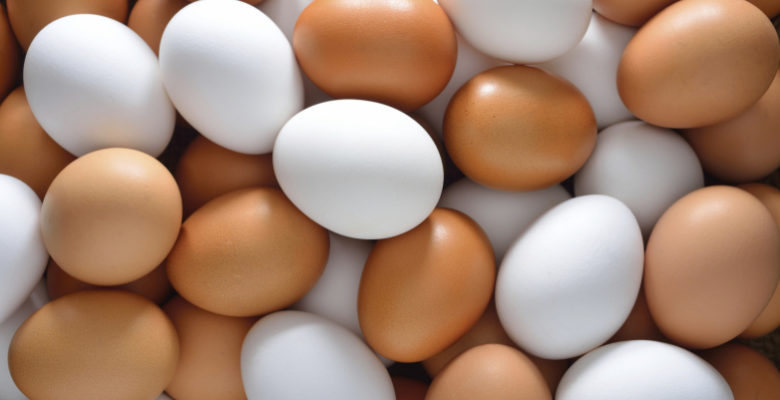 Irak yumurta ithalatını durdurdu, yumurta üreticisi zorda