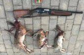 Projektör ile yaban tavşanı avına 7 bin lira ceza