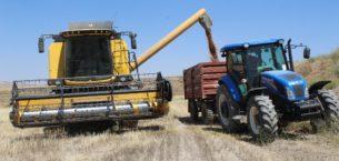 Kuraklık buğday verimini yüzde 60 düşürdü