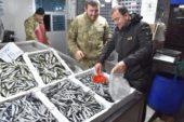 Karadeniz'de balık fiyatları