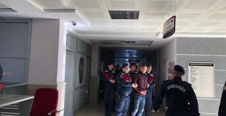 240 koyunu çalan 2 kişi yakalandı