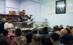 Kırklareli'de güvercin sevenleri buluşturan mezat