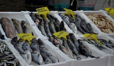 Adıyaman'da 1 Nisan'da su ürünlerinde avlanma yasağı başlıyor