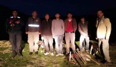 Oklu kirpi avlayan 2 kişiye 36 bin lira ceza