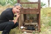 150 tavuğunu telef eden tilkiyi, özel düzenekle yakaladı