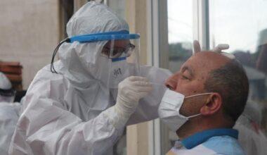 Rize'ye gelen çay üreticilerinin 10'unda virüs tespit edildi