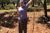 Tarlasında gördüğü 2,5 metrelik yılanı eliyle yakalayıp poz verdi