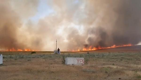 Ankara'da yangında 700 dönüm ekili arazi zarar gördü