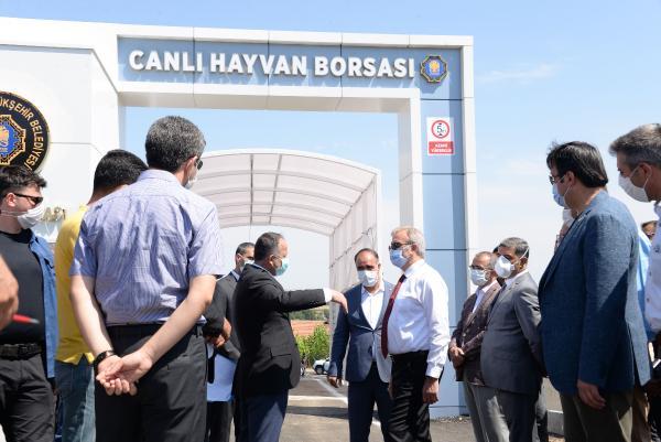 Diyarbakır'daki canlı hayvan borsası, 6 Temmuz'da açılıyor