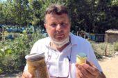 Kilosu 8 bin liradan satılan arı sütü talebine yetişemiyorlar