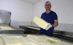 Manyas kelle peynirinin tescilinde son aşamaya gelindi