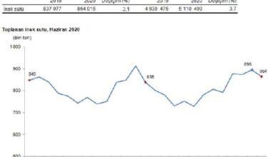 TÜİK – Yoğurt üretimi yılın ilk yarısında yüzde 2.5 azaldı