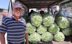 Burdur'da fasulye üreticisinin yüzü gülüyor