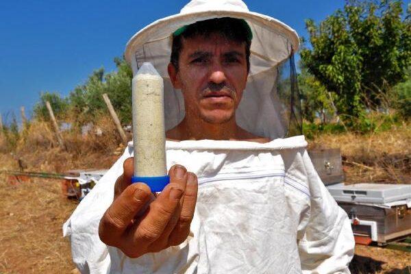 Gramını 700 liradan arı zehri ihraç ediyor
