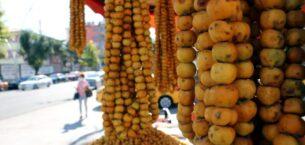 Tokat'ta alıç meyvesini çekirdeğiyle yiyen 3 kişi hastanelik oldu