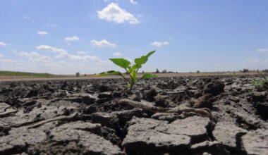 Kuraklık ve iklim şartları, üreticinin ekim dönemini değiştirdi