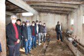 Erzurum'da dolandırılan 30 besicinin ahırında, horoz ve tavuklar kaldı
