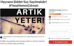Hayvana şiddet yasası için 1,5 milyon imza