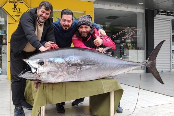 Amatör balıkçı, oltayla 173 santim boyunda orkinos yakaladı