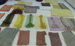Balıkesir'de 30 çeşit bitkiden 60 renk elde edildi