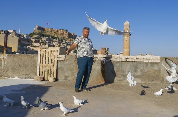 Güvercinleri için 40 bin TL'ye oda yaptırdı; yemlerine yılda 20 bin TL harcıyor