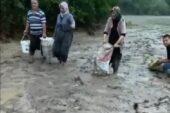Sel sularıyla tarlalara sürüklenen balıkları topladılar
