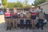 Adilcevaz'da şahin avı yapan 2 kişiye 13 bin lira ceza