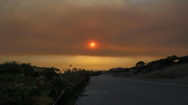 Manavgat'taki büyük yangın 8'inci gününde (11)